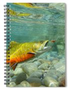 Brookie With Wet Fly Spiral Notebook