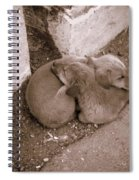 Brothers In Arms Spiral Notebook