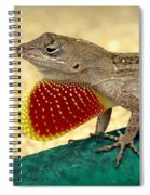 Brown Anole Spiral Notebook
