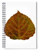 Brown Aspen Leaf 2 Spiral Notebook