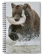 Brown Bear With Salmon Catch Spiral Notebook