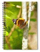 Brown Butterfly 2 Spiral Notebook