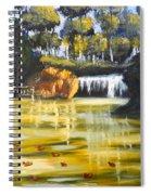 Brown Ducks Near The Waterfall Spiral Notebook