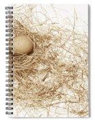 Brown Egg In Bird Nest Sepia Spiral Notebook
