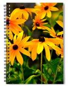 Brown Eyed Susan Spiral Notebook