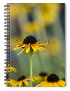 Brown Eyed Susans On Yellow And Green Spiral Notebook