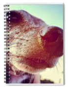 Brown Noser Spiral Notebook