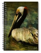 Brown Pelican Beauty Spiral Notebook