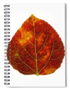 Brown Red And Yellow Aspen Leaf 1 Spiral Notebook