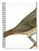 Brown Towhee Spiral Notebook