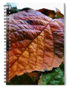 Browned Off  Spiral Notebook