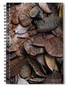 Browns Spiral Notebook