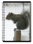 Brrrrrrrrrrrr - Featured In Comfortable Art Group Spiral Notebook