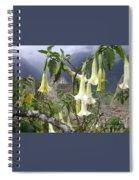 Brugmansia At Machu Picchu Spiral Notebook