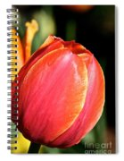 Brushstrokes By Tulip Spiral Notebook