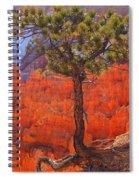 Bryce Canyon National Park Utah Spiral Notebook