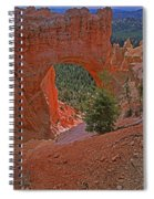 Bryce Canyon Natural Bridge And Tree Spiral Notebook