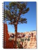 Bryce Canyon Pine Spiral Notebook