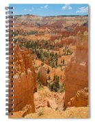 Bryce Canyon Valley Walls Spiral Notebook