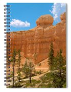 Bryce Canyon Walls Spiral Notebook