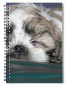 Bubba Spiral Notebook
