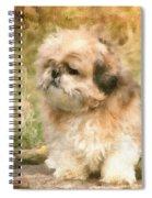 Shih Tzu In Oil Spiral Notebook