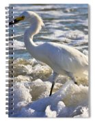 Bubbles Around Snowy Egret Spiral Notebook