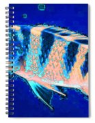 Bubbles - Fish Art By Sharon Cummings Spiral Notebook