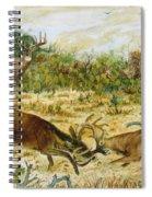 Buck Fight Spiral Notebook