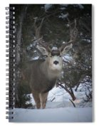 Buck I Spiral Notebook