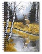Buck Reflection Spiral Notebook