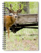Buck Wagon Spiral Notebook