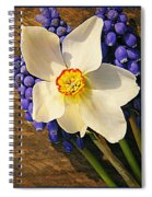 Buckeye And Grape Hyacinth Spiral Notebook