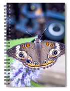 Buckeye I Spiral Notebook