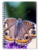 Buckeye II Spiral Notebook