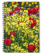 Buckingham Beauty Spiral Notebook