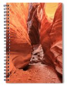 Buckskin Bulge Spiral Notebook