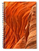 Buckskin Fiery Orange Spiral Notebook