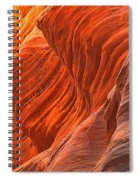 Buckskin Shades Of Red Spiral Notebook