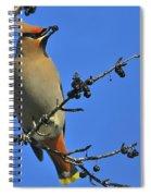 Buckthorn Breakfast Spiral Notebook