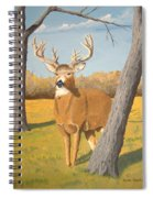 Bucky The Deer Spiral Notebook