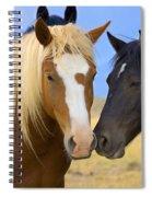 Buddies Wild Mustangs Spiral Notebook