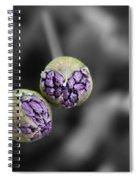Budding Alliums Spiral Notebook