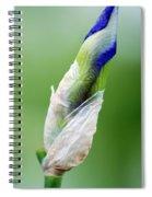 Budding Blue Spiral Notebook