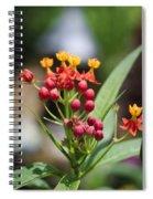 Budding Spiral Notebook