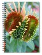 Budding Coneflower Spiral Notebook