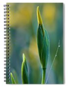 Budding Iris Spiral Notebook