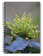 Budding Mahonia Spiral Notebook
