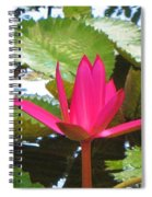 Budding Majesty  Spiral Notebook