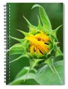Budding Sunflower Spiral Notebook
